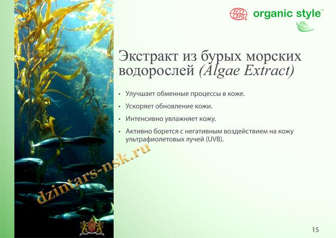 Organic Style_Clean-Skin_RU-15 (копия)