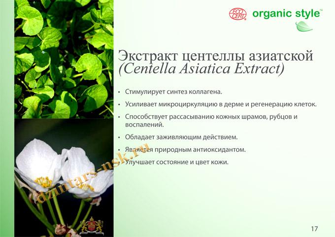 Organic Style_Clean-Skin_RU-17 (копия)