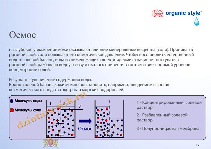 Organic Style_Hyrdocomfort_RU-19 (копия) - копия