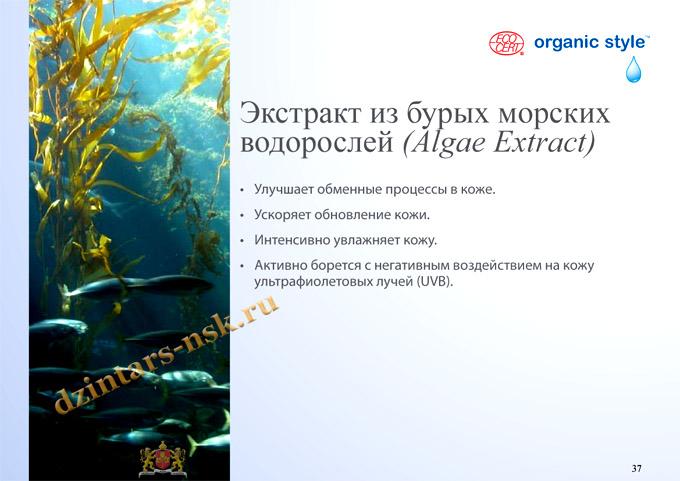 Organic Style_Hyrdocomfort_RU-37 (копия) - копия